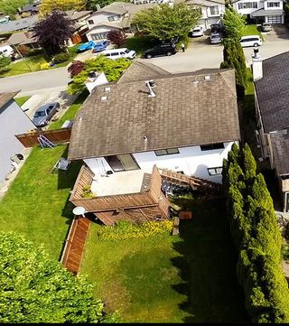 Photo 19: 20494 Deniza Ave in Maple Ridge: House for sale : MLS®#  V1084847