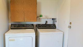Photo 15: 20494 Deniza Ave in Maple Ridge: House for sale : MLS®#  V1084847