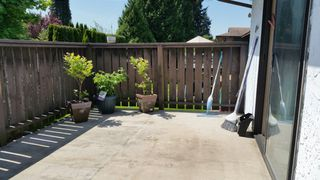 Photo 9: 20494 Deniza Ave in Maple Ridge: House for sale : MLS®#  V1084847