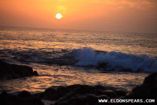Photo 6: Solarium - Oceanfront Condos available in Coronado