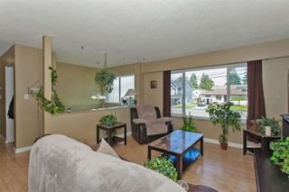 Photo 12: 22960 117 AVENUE in Maple Ridge: East Central House for sale : MLS®# R2262197