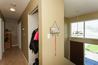 Photo 16: 22960 117 AVENUE in Maple Ridge: East Central House for sale : MLS®# R2262197