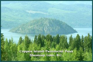 Photo 26: Lot 49 Forest Drive: Blind Bay Vacant Land for sale (Shuswap Lake)  : MLS®# 10217653