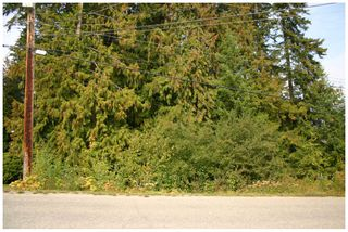 Photo 4: Lot 49 Forest Drive: Blind Bay Vacant Land for sale (Shuswap Lake)  : MLS®# 10217653