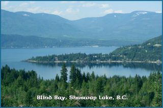 Photo 25: Lot 49 Forest Drive: Blind Bay Vacant Land for sale (Shuswap Lake)  : MLS®# 10217653