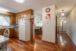 Photo 8: 8727 179 Street in Edmonton: Zone 20 House for sale : MLS®# E4166417