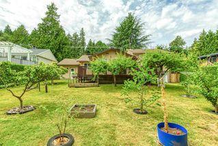 Photo 6: 1176 ENGLISH BLUFF Road in Delta: Tsawwassen Central House for sale (Tsawwassen)  : MLS®# R2477380