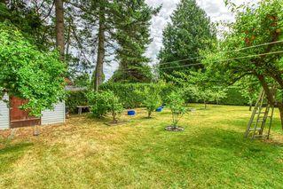 Photo 4: 1176 ENGLISH BLUFF Road in Delta: Tsawwassen Central House for sale (Tsawwassen)  : MLS®# R2477380
