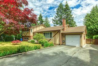 Photo 2: 1176 ENGLISH BLUFF Road in Delta: Tsawwassen Central House for sale (Tsawwassen)  : MLS®# R2477380