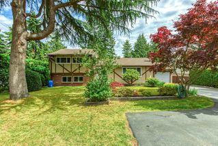 Photo 3: 1176 ENGLISH BLUFF Road in Delta: Tsawwassen Central House for sale (Tsawwassen)  : MLS®# R2477380