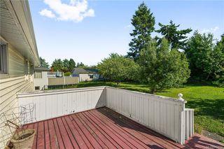Photo 16: 291 Homer Rd in Saanich: SW Tillicum Single Family Detached for sale (Saanich West)  : MLS®# 843937