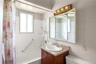 Photo 8: 291 Homer Rd in Saanich: SW Tillicum Single Family Detached for sale (Saanich West)  : MLS®# 843937