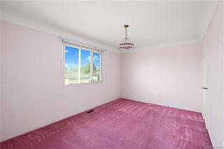 Photo 7: 291 Homer Rd in Saanich: SW Tillicum House for sale (Saanich West)  : MLS®# 843937