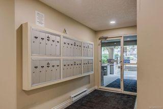 Photo 30: 307 2710 Grosvenor Rd in : Vi Oaklands Condo Apartment for sale (Victoria)  : MLS®# 855712