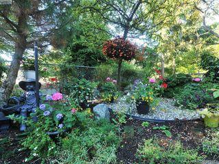 Photo 16: 114 1485 Garnet Road in VICTORIA: SE Cedar Hill Condo Apartment for sale (Saanich East)  : MLS®# 341673
