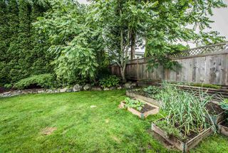 Photo 18: 8233 FUJINO STREET in Mission: Mission BC House for sale : MLS®# R2080943