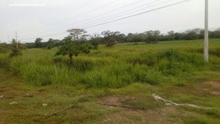 Photo 1: Land for Sale - Penonome