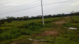 Photo 2: Land for Sale - Penonome
