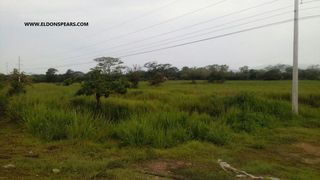 Photo 4: Land for Sale - Penonome