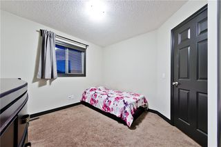 Photo 14: 127 SKYVIEW SPRINGS MR NE in Calgary: Skyview Ranch House for sale : MLS®# C4232076