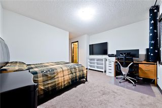 Photo 25: 127 SKYVIEW SPRINGS MR NE in Calgary: Skyview Ranch House for sale : MLS®# C4232076