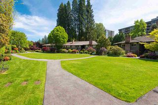 """Photo 14: 606 235 KEITH Road in West Vancouver: Cedardale Townhouse for sale in """"Spuraway Gardens"""" : MLS®# R2439356"""