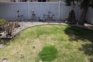 Photo 49: 11211 24 Avenue NW in Edmonton: Zone 16 House for sale : MLS®# E4194286