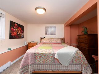 Photo 16: 3661 Savannah Ave in : SE Swan Lake House for sale (Saanich East)  : MLS®# 856260