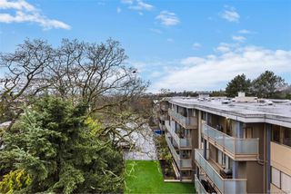 Photo 14: 504 1025 Inverness Rd in : SE Quadra Condo for sale (Saanich East)  : MLS®# 830770