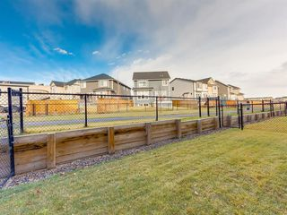 Photo 42: 1602 1086 Williamstown Boulevard NW: Airdrie Row/Townhouse for sale : MLS®# A1047528