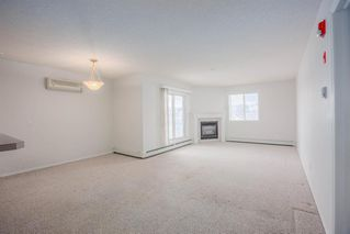 Photo 12: 220 290 Shawville Way SE in Calgary: Shawnessy Apartment for sale : MLS®# A1056416