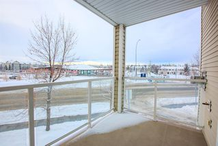 Photo 14: 220 290 Shawville Way SE in Calgary: Shawnessy Apartment for sale : MLS®# A1056416