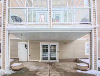 Photo 3: 220 290 Shawville Way SE in Calgary: Shawnessy Apartment for sale : MLS®# A1056416