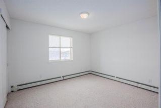 Photo 15: 220 290 Shawville Way SE in Calgary: Shawnessy Apartment for sale : MLS®# A1056416