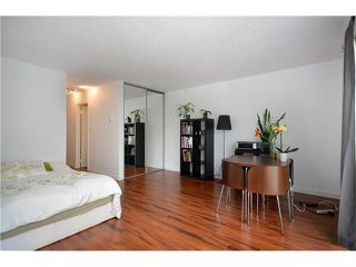 Photo 2: 304 334 E 5TH Avenue in Vancouver: Mount Pleasant VE Condo for sale (Vancouver East)  : MLS®# V950537