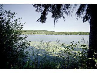 Photo 3: 3803 ALLPRESS Road in Williams Lake: Williams Lake - Rural East House for sale (Williams Lake (Zone 27))  : MLS®# N229517