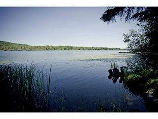 Photo 5: 3803 ALLPRESS Road in Williams Lake: Williams Lake - Rural East House for sale (Williams Lake (Zone 27))  : MLS®# N229517