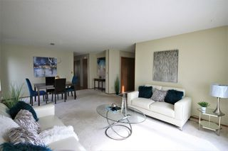 Photo 4: 1047 Marchand Road in Ritchot Rm: R07 Residential for sale : MLS®# 202011904