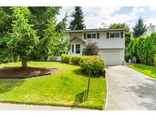Photo 2: 26868 33 Avenue in Langley: Aldergrove Langley House for sale : MLS®# R2479885