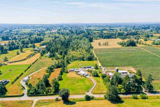 Photo 9: 2757 256 Street in Langley: Aldergrove Langley House for sale : MLS®# R2480649