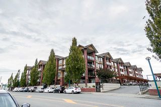Photo 4: 132 5660 201A Street in Langley: Langley City Condo for sale : MLS®# R2502123