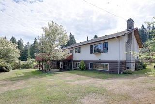 Photo 4: 24105 61 Avenue in Langley: House for sale