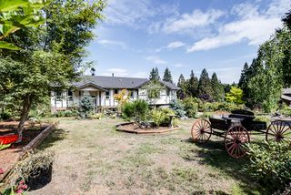 Photo 3: 24105 61 Avenue in Langley: House for sale