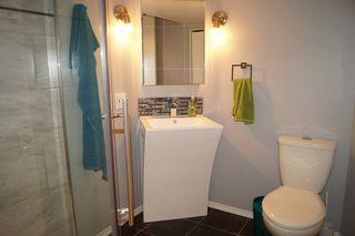 Photo 21: 163 Larche Avenue in Winnipeg: Single Family Detached for sale (Transcona)  : MLS®# 1605930