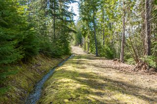 Photo 12: 5524 Eagle Bay Road in Eagle Bay: House for sale : MLS®# 10141598