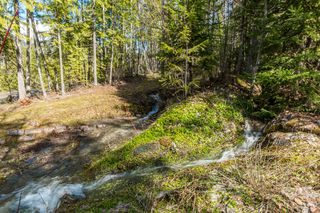 Photo 7: 5524 Eagle Bay Road in Eagle Bay: House for sale : MLS®# 10141598