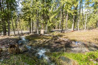 Photo 8: 5524 Eagle Bay Road in Eagle Bay: House for sale : MLS®# 10141598