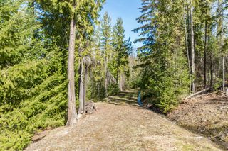 Photo 17: 5524 Eagle Bay Road in Eagle Bay: House for sale : MLS®# 10141598
