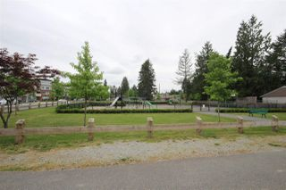 Photo 15: 304 - 12170 222 St in Maple Ridge: West Central Condo for sale : MLS®# R2050674