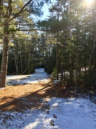 Photo 6: Lot 100 Beach Point Road in Martins River: 405-Lunenburg County Vacant Land for sale (South Shore)  : MLS®# 202002409